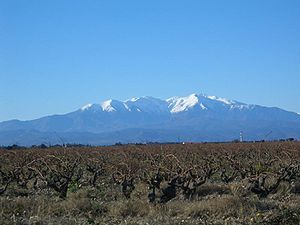 Roussillon - A snow-capped Mount Canigó (Canigou) (2785m) across the Roussillon plain.