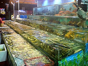Cantonese cuisine - Seafood tanks in a Cantonese restaurant