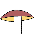 Cappello convesso disegno.png