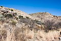Carlsbad Caverns National Park and White's City, New Mexico, USA - 48344717306.jpg