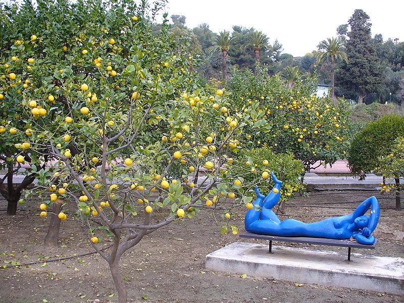 photo des jardins du palais de carnoles