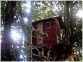Casa del arbol en la Isla Helvecia, Calbuco (2312978035).jpg