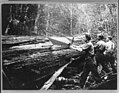 Cascade Mountains, near Seattle, Wash.- (Cutting shingle bolts) LCCN2004665694.jpg