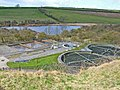 Cassop Sewage Farm (and National Nature Reserve^) - geograph.org.uk - 153628.jpg