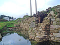 Castelo da rocha forte foxo.JPG