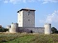 Castillo de Mendoza (Álava).jpg