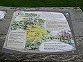 Castlerigg Stone Circle, near Keswick - panoramio (2).jpg