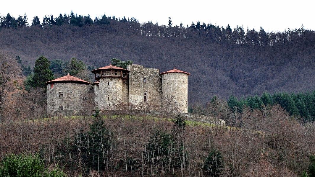 Le Château de La Chèze depuis la route de Saint-Martin (D120).