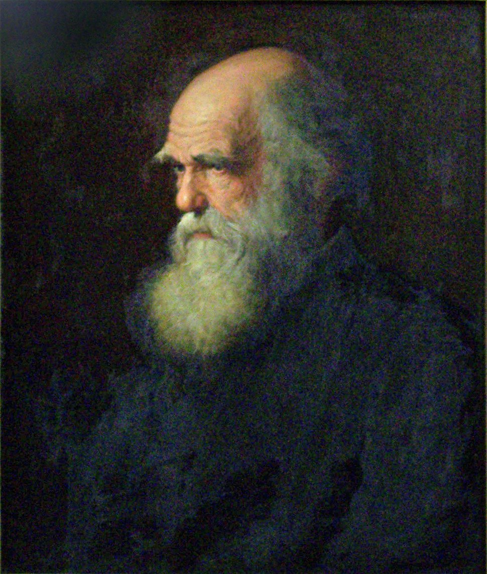 Charles Darwin painting by Walter William Ouless, 1875