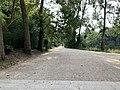Chemin près Lac Saint Mandé - Paris XII (FR75) - 2021-08-16 - 1.jpg