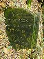 Chenstochov ------- Jewish Cemetery of Czestochowa ------- 173.JPG