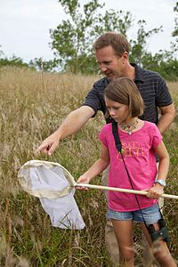 Child and men look for insects in the grass.jpg