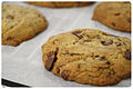 Chocolate chip coooookies on parchment paper, cooling, May 2009.jpg
