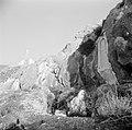 Christusbeeld op de heuvel boven Nahr el Kelb In de rotsen een vaag reliëf, Bestanddeelnr 255-6441.jpg