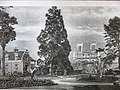 Church Notre-Dame des Champs (Avranches) and sequoia of the jardin des Plantes (historical image).jpg