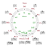 Circle of fifths deluxe 4 catala.png