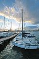 Circolo Nautico NIC Porto di Catania Sicilia Italy Italia - Creative Commons by gnuckx (5386839386).jpg