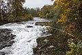 Clackamas River, Oregon (36993107536).jpg