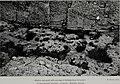 Clare Island survey (1911) (20466632710).jpg