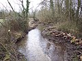 Cleared stream near Winterbourne Dauntsey - geograph.org.uk - 337573.jpg