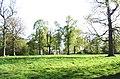 Clearing in Furzefield Wood near Brook - geograph.org.uk - 404176.jpg