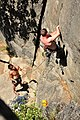Climbing in Leavenworth, Washington.jpg