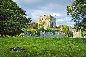 Robert James Graves - Cloghan Castle, the home of the Graves family from 1852 until 1908.
