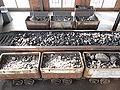 Coal mining Leseband.jpg