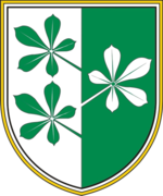 Coat of arms of Kidričevo.png