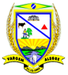 Coat of arms of Vargem Alegre MG.PNG