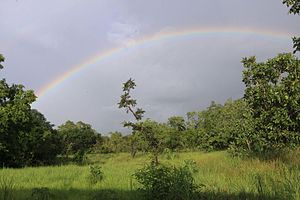 Comoé National Park - Comoe NP savannah with rainbow