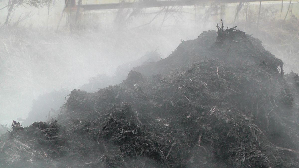 Uses of compost wikipedia for Uses of soil wikipedia