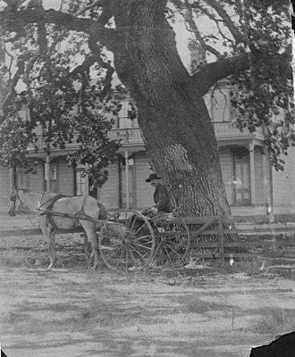 Newbury Park, California - Conejo Hotel at Timberville, 1880s.