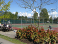 Coquitlam Tennis Club.png