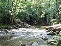 Crabtree Creek Company Mill Trail Umstead NC SP 0097 (3583859406).jpg