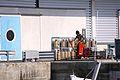 Débarquement de la pêche du jour d' un chalutier (15).JPG