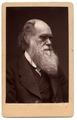 Darwin - John G Murdoch Portrait.tif