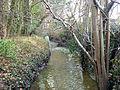 De Hollebeek in Kwenenbos naast domein langs het domein van Krombrugge.JPG