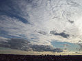 De Madrid al cielo 142.jpg
