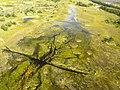 De Okovango Delta vanuit de lucht (6558972849).jpg