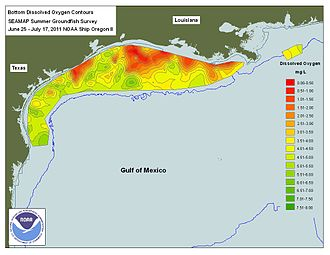 Dead zone (ecology) - Dead zone in the Gulf of Mexico