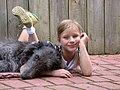 Deerhound.jpg