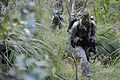 Defense.gov News Photo 110718-N-MF277-064 - U.S. Army Pfc. Sam McQuaid assigned to 1st Squadron 158th Cavalry Regiment patrols while on a reconnaissance mission to gather intelligence on.jpg
