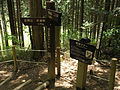 Diamond Trail, Mount Yamatokatsuragi02.JPG