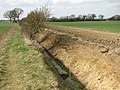 Ditch beside footpath - geograph.org.uk - 1767836.jpg