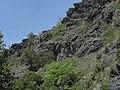 Divoká Šárka - panoramio (27).jpg