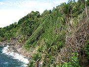 Dominica IMG 5563