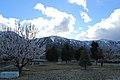 Douglas County - panoramio (29).jpg