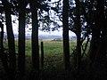 Downland from bridleway, Stockton Wood - geograph.org.uk - 489213.jpg