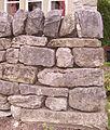 Dry stone wall Malham 10.JPG